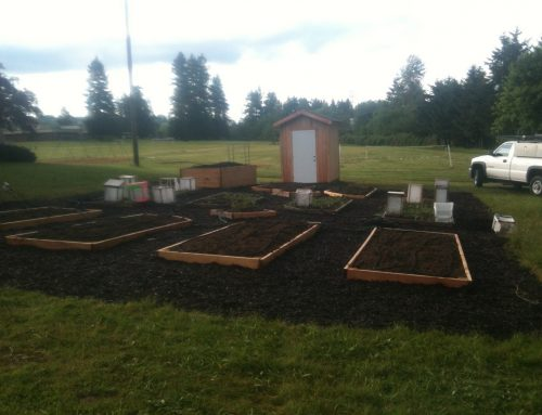 Outdoor teaching area and garden expansion